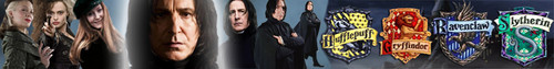 Snape's Banner - snapes-family-and-friends Photo