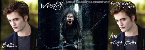 Some funny pictures of Bellatrix