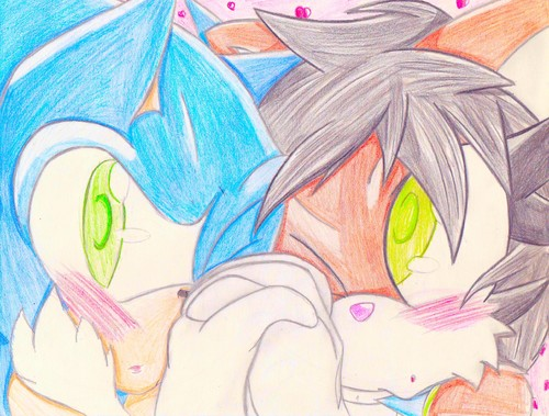 SonicxTallie ((A friend's coupling))