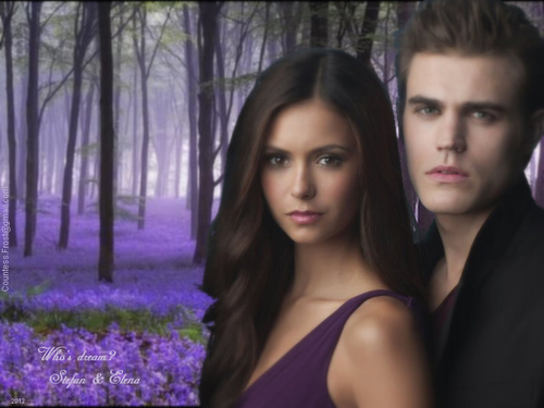 Who's dream? - Stefan & Elena