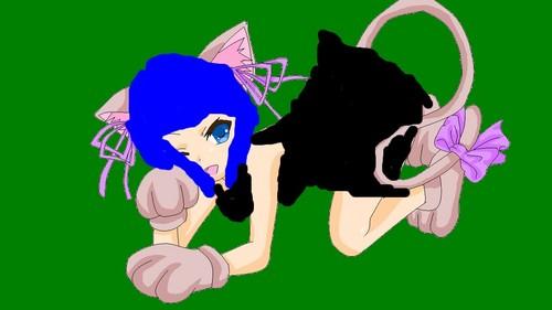 kitty konan