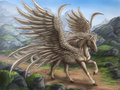 ★ Pegasus ☆