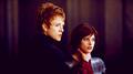Alice Cullen <3