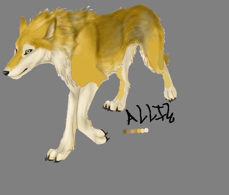 Allie Wolf