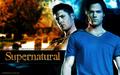 supernatural - Brotherly love.. wallpaper