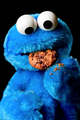 Cookie Monster - misspansea photo