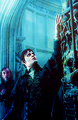 Dark Shadows promo stills - tim-burton photo