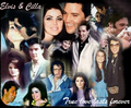 Elvis & Priscilla ♥ - elvis-and-priscilla-presley fan art