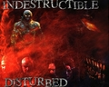 Indistructible - disturbed photo