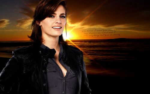 Kate Beckett karatasi la kupamba ukuta probably containing a sunset and a well dressed person titled Kate <33