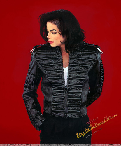 Michael Jackson Who is it Cover