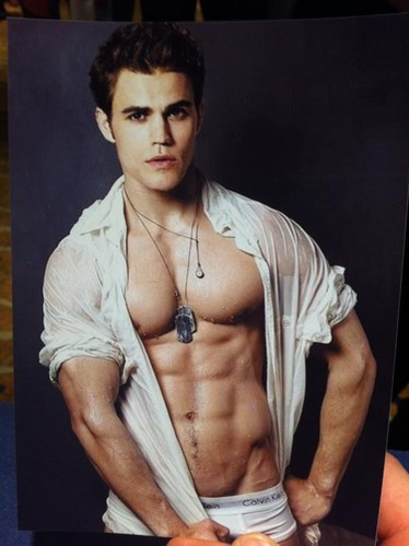 Paul Wesley wallpaper probably containing a sign entitled Paul's face on an other guy's body