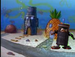 Private, why are You At Spongebob's Place?