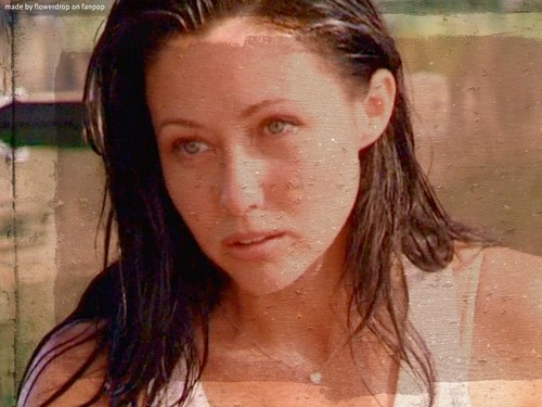 Prue Halliwell wallpaper containing a portrait titled Prue Halliwell Wallpaper