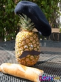 Sam's pineapple