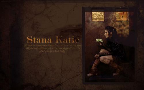 斯坦娜·卡蒂克