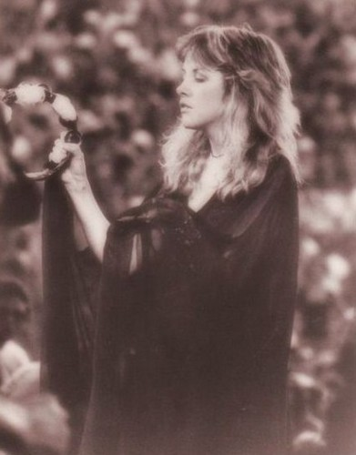 Stevie Enchanting