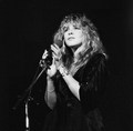 Stevie Enchanting - stevie-nicks photo