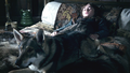 Summer and Bran - game-of-thrones-direwolves photo