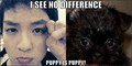 Teen Top Ricky = Puppy - I see no difference