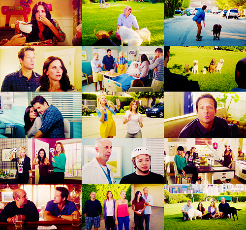 cougar town;