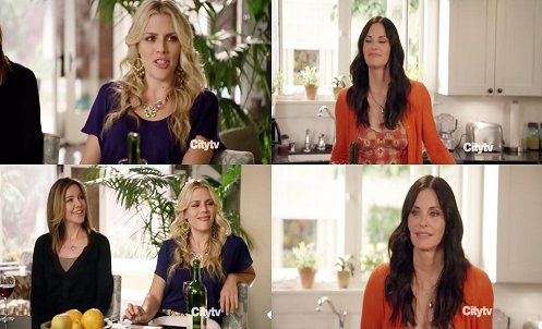Cougar Town wallpaper probably containing a portrait called cougar town;
