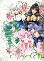 sailor moon - bakugan-and-sailor-moon photo