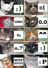 very cute but funny Gatti :P
