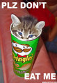 very cute but funny Pusa :P
