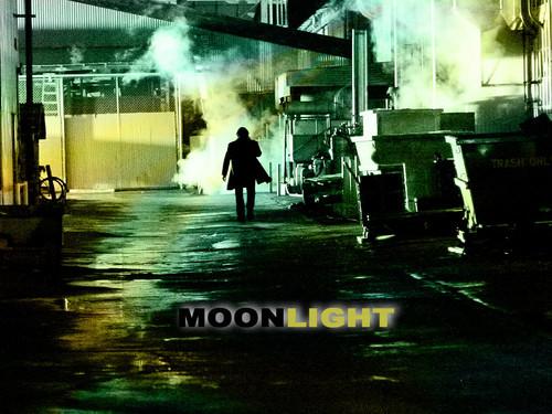 ♥ Moonlight ♥
