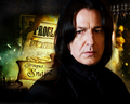  Severus Snape   - severus-snape wallpaper