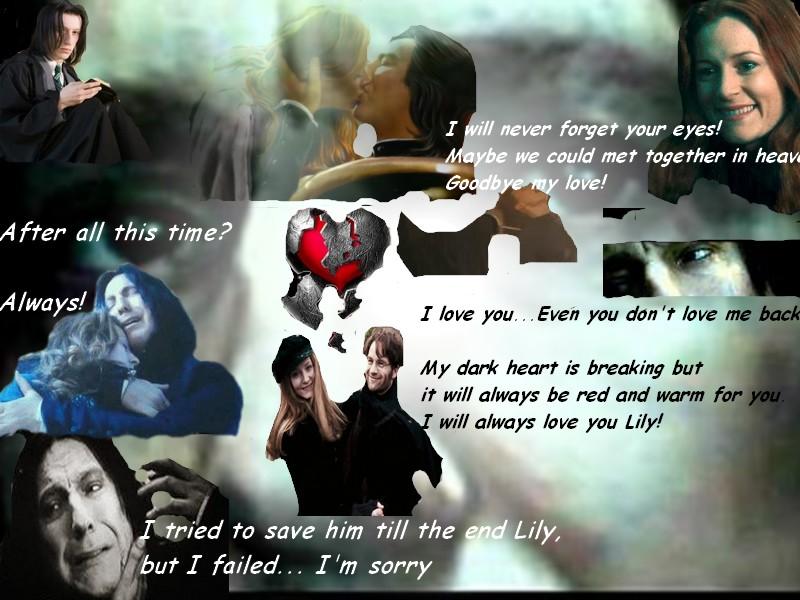 ☆ Severus & Lilly ☆