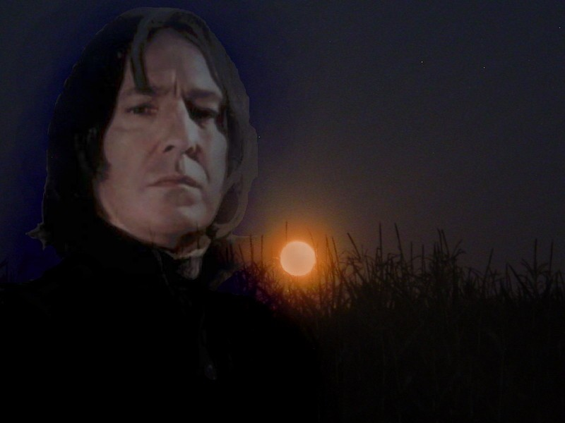 Severus Snape ☆ - Severus Snape Wallpaper (29663872) - Fanpop