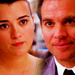 20in20 TZ - tiva icon