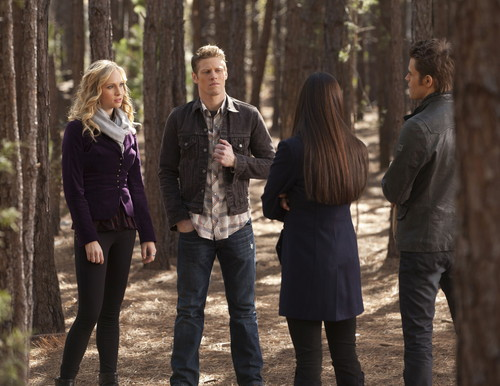 Stefan & Caroline images 3×18 The Murder of One HD wallpaper and background photos
