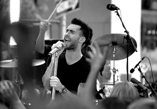 Adam - adam-levine Photo