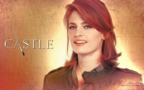 Beckett &lt;3 - castle-and-beckett Wallpaper