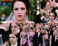 Bella & Edward Wedding