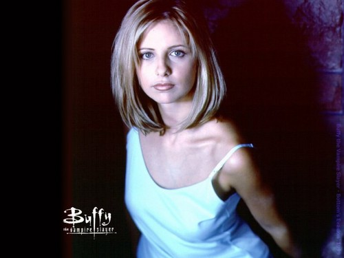 HaleyDewit wallpaper possibly containing attractiveness, a chemise, and a leotard titled Buffy Summers (Buffy the Vampire Slayer)