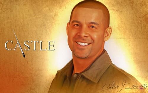 城堡 Cast <3