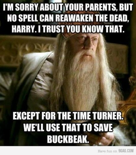 HP Funnies