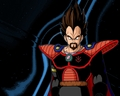 King Vegeta - bardock-and-king-vegeta wallpaper