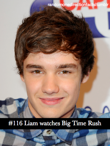 Liam Payne's Facts ♥