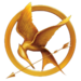 Mockingjay Pin :)
