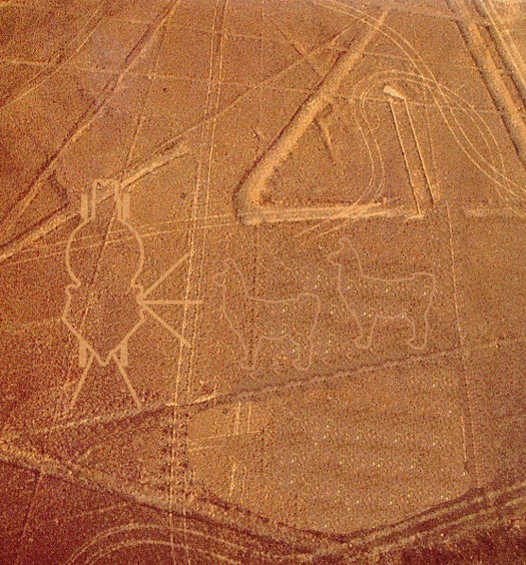 ナスカの地上絵遺跡 りゃまの壁紙