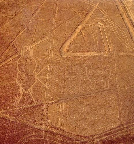 Nazca-lines-llama