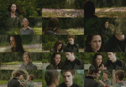 New Moon- Bella's dream