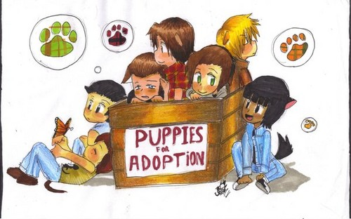 Outsiders Puppies <3