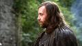 Sandor Clegane - house-lannister photo