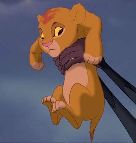 Simba Cub